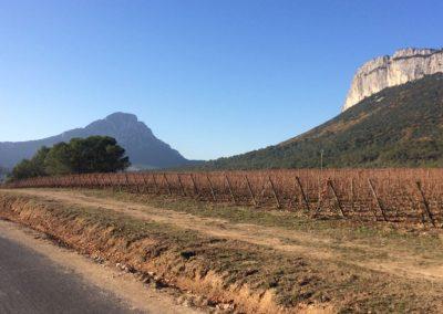 Terrain : Arrière-pays Montpelliérain